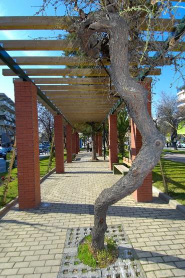 Ανάπλαση και διαμόρφωση πλατειών και κοινόχρηστων χώρων δήμου Βύρωνα